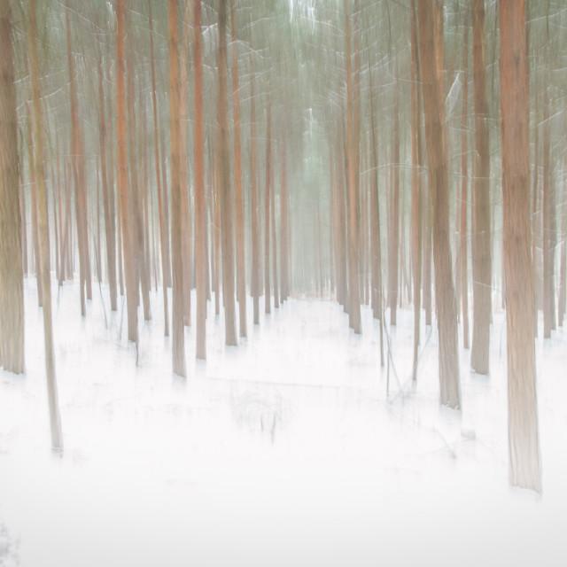 """""""Snowy ICM"""" stock image"""