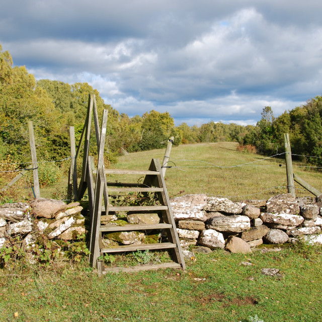 """""""Wooden stile by a stone wall"""" stock image"""