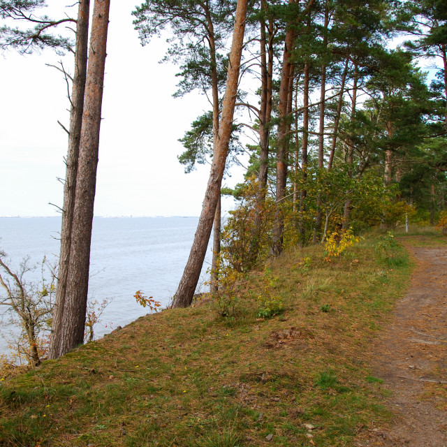 """Coastal footpath by fall season"" stock image"