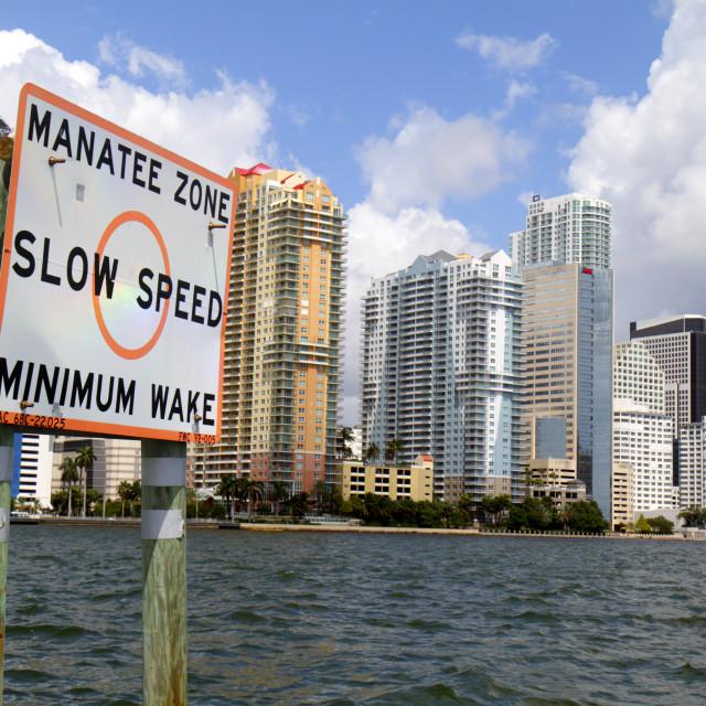"""""""Miami Florida,"""" stock image"""
