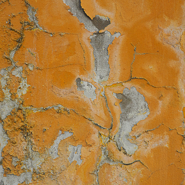 """""""Old paint peeling off of an outdoor wall"""" stock image"""
