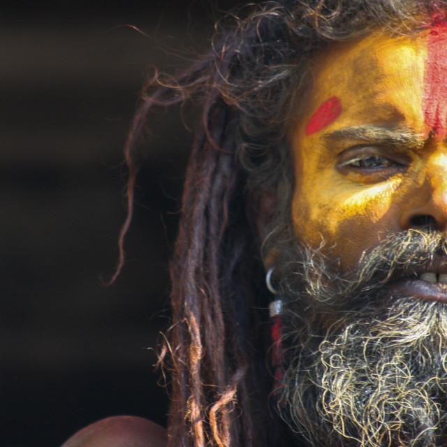 """""""Nepalese sadhu"""" stock image"""