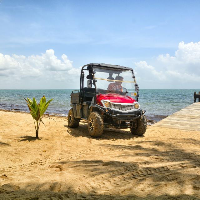 """Patroling the beach"" stock image"