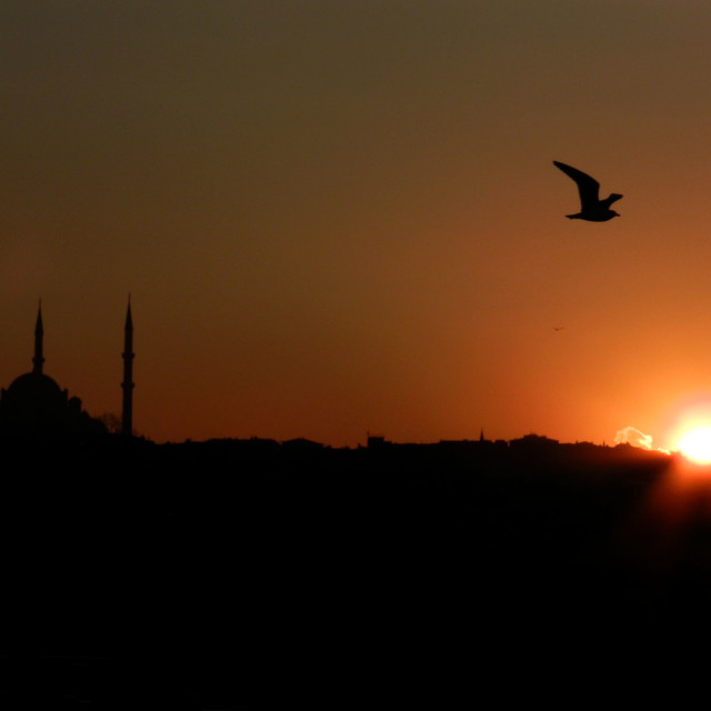 """""""Sunset with mosque and seagull"""" stock image"""