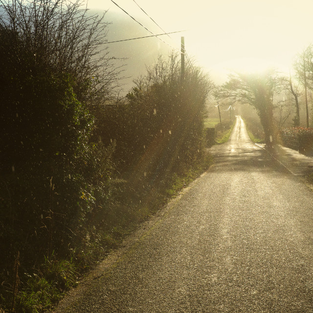 """""""Road into the sun after heavy rain"""" stock image"""