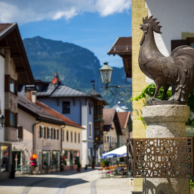 """Garmisch-Partenkirchen Cockrel"" stock image"