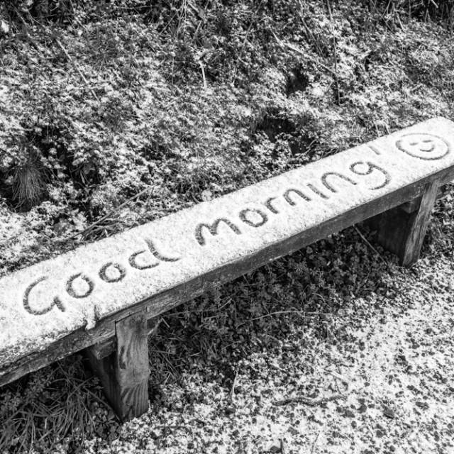 """Good Morning"" stock image"