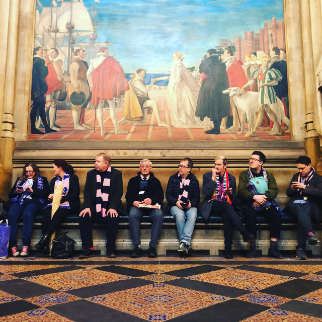 """Dulwich Hamlet fans at Parliament"" stock image"