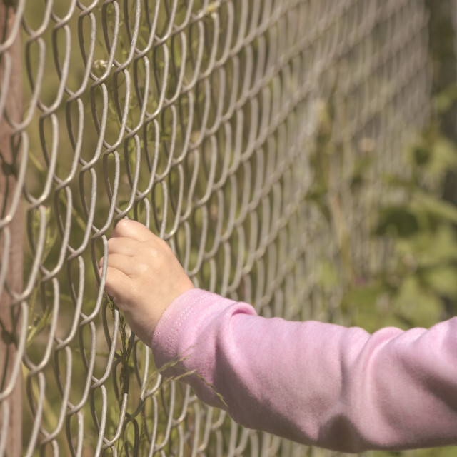 """Girls hand holding a fence"" stock image"