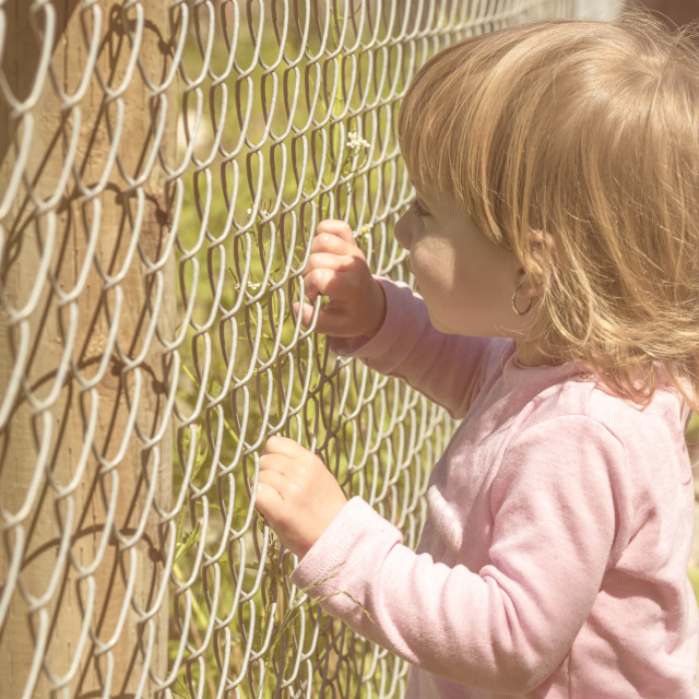"""Little girl holding fence"" stock image"