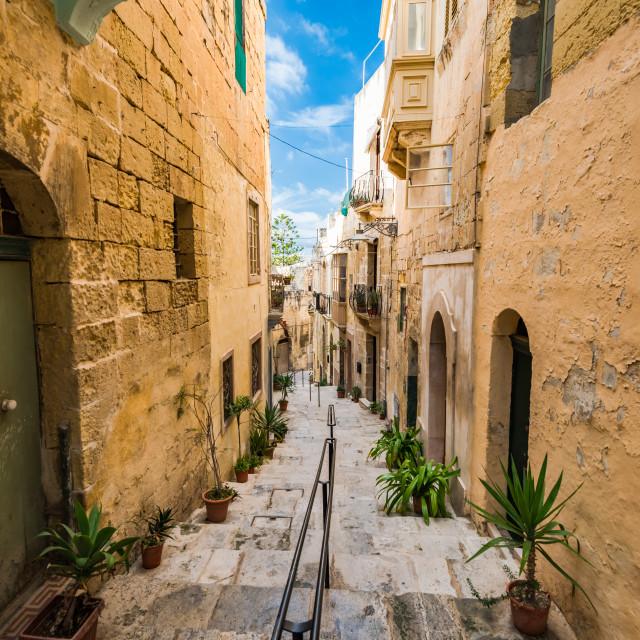 """Narrow charming street in Birgu,Malta"" stock image"
