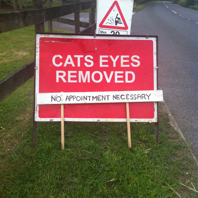 """""""Funny cats eyes road sign"""" stock image"""
