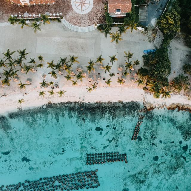 """Caribbean Paradise"" stock image"