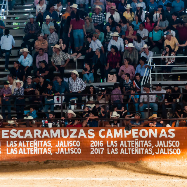 """Charro Championship Audience"" stock image"