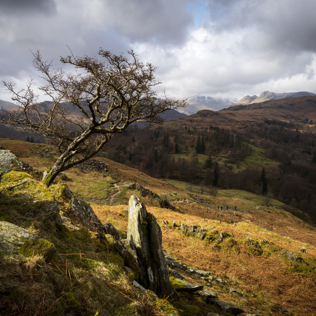 """""""Stormy Loughrigg Fell"""" stock image"""