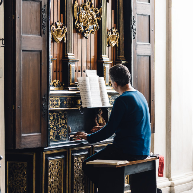 """""""Organist playing the organ"""" stock image"""
