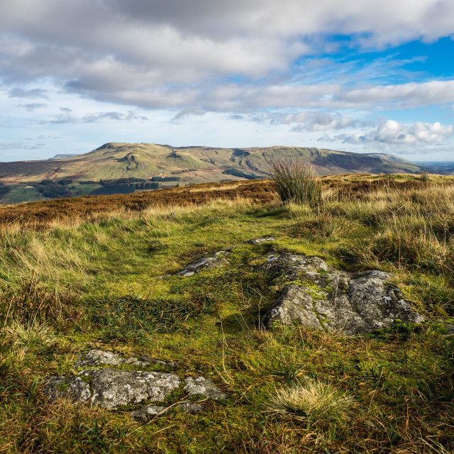 """""""Auchineden Hill And Campsie Fells"""" stock image"""
