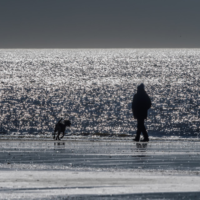 """""""Man and dog at the North sea coast in Blaavand"""" stock image"""