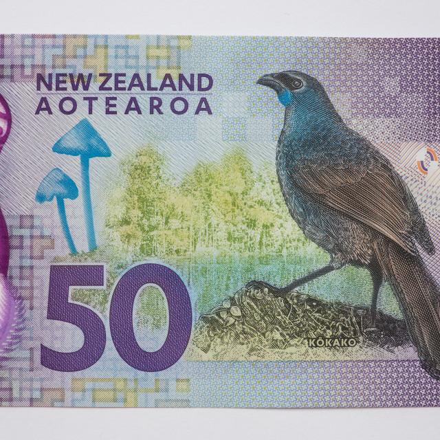 """New Zealand Fifty Dollar Note - Back"" stock image"