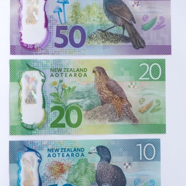 """Back of New Zealand Bank Notes"" stock image"