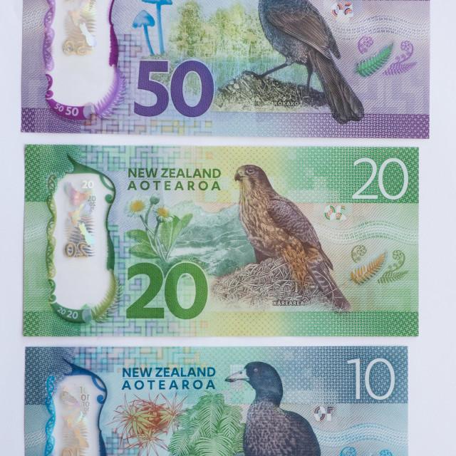 """New Zealand Bank Notes"" stock image"