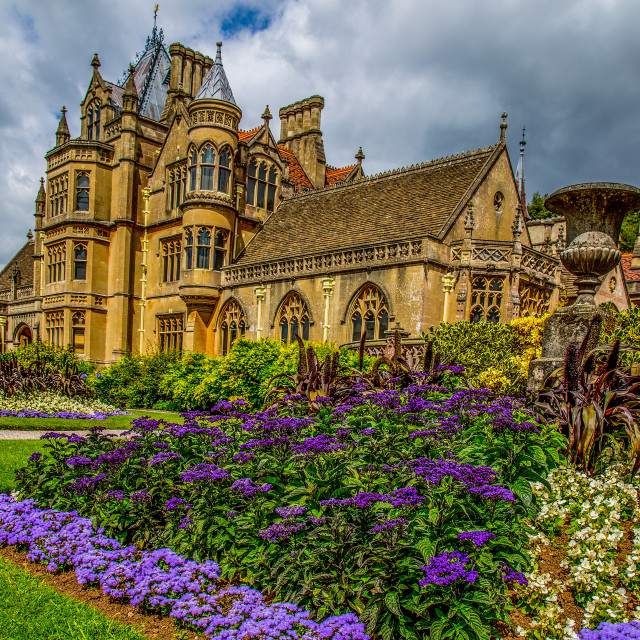 """Tyntesfield House"" stock image"