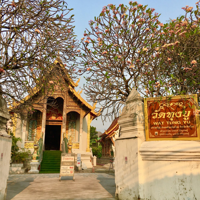 """Temple Chiang Mai"" stock image"