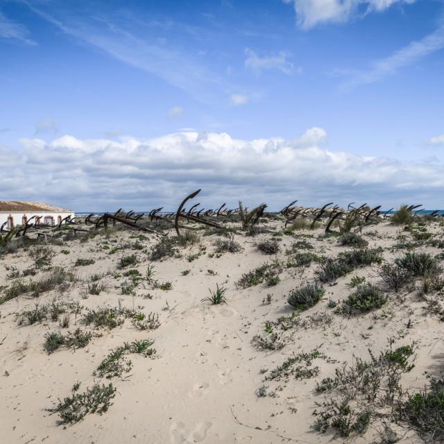 """Barril Beach Portugal"" stock image"
