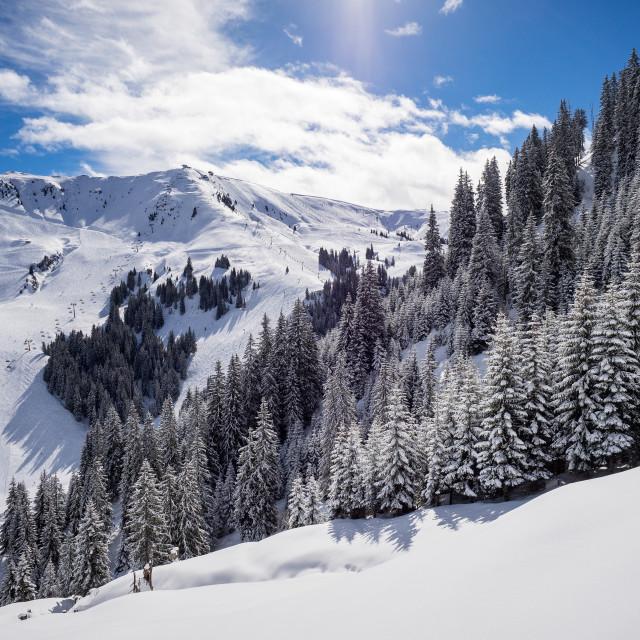 """Snowy Hahnenkamm"" stock image"