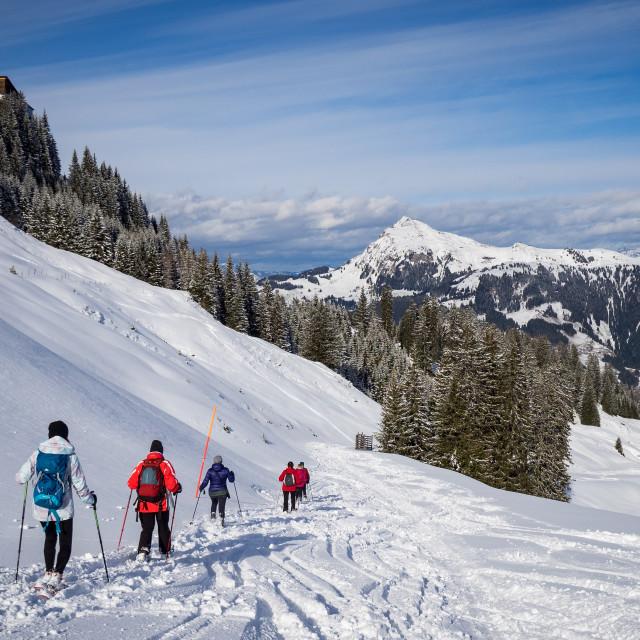 """Winter Walking In Kitzbühel"" stock image"