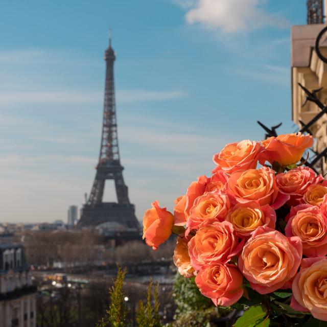 """""""Spring in Paris"""" stock image"""