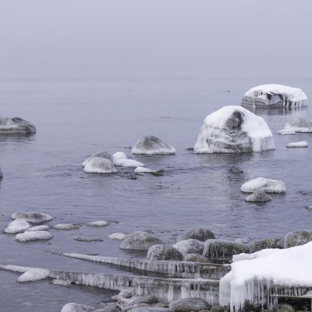 """Baltic Sea in the winter"" stock image"