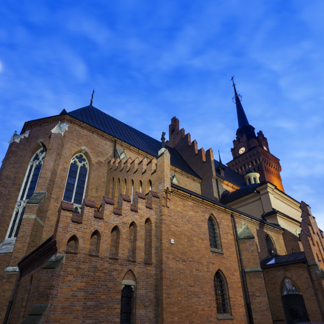 """""""Cathedral Basilica of the Nativity of the Blessed Virgin Mary in Tarnow"""" stock image"""