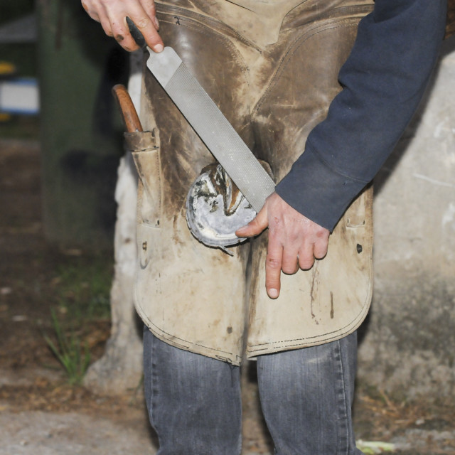 """Farrier"" stock image"