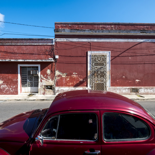 """Street view in the centre of Merida downtown in Mexico"" stock image"