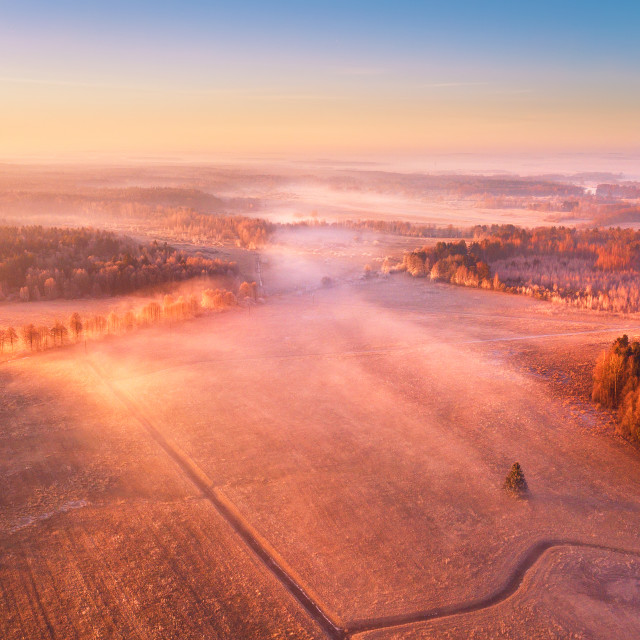 """Aerial foggy rural landscape. Sunny misty morning"" stock image"