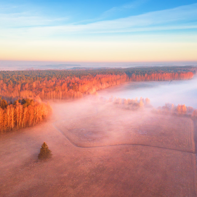 """Spring foggy sunrise. Mist over fields."" stock image"