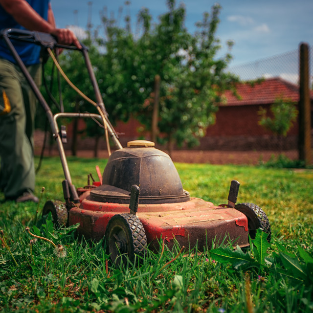 """Lawn mower cutting green grass in backyard.Gardening background."" stock image"