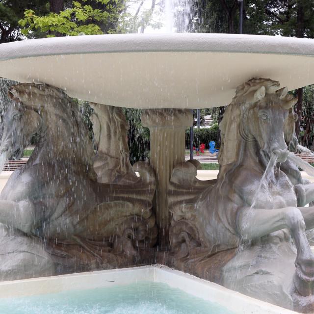 """fountain of the four horses in Rimini"" stock image"