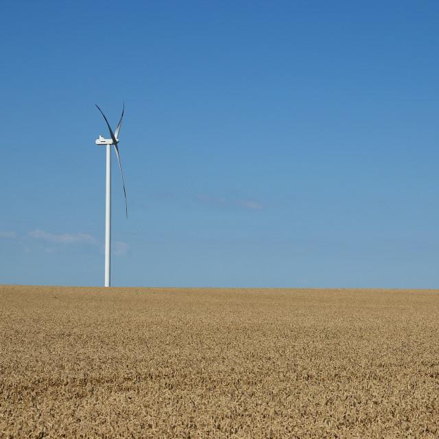 """wind turbine on field renewable energy"" stock image"