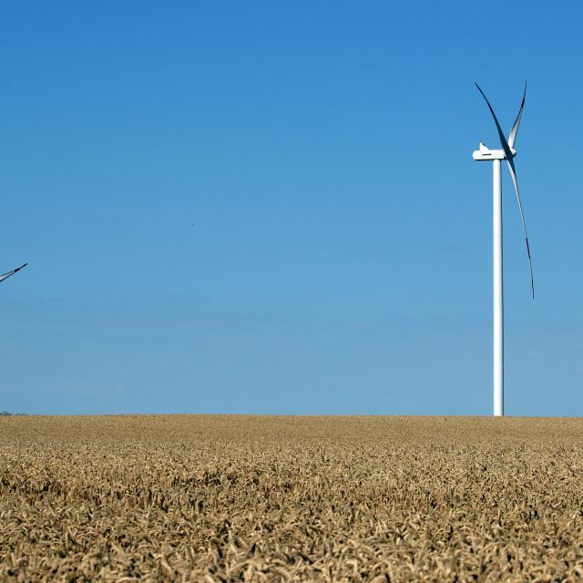 """wind turbines on wheat field renewable energy"" stock image"