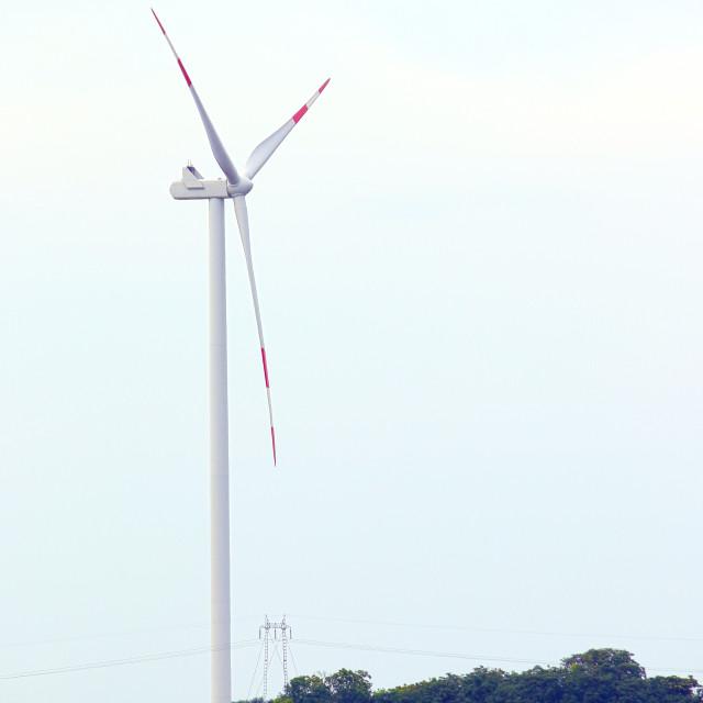 """""""wind turbine on soya bean field renewable energy"""" stock image"""