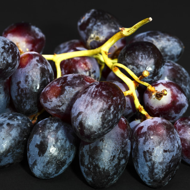 """""""Close up of a bunch of black grapes"""" stock image"""