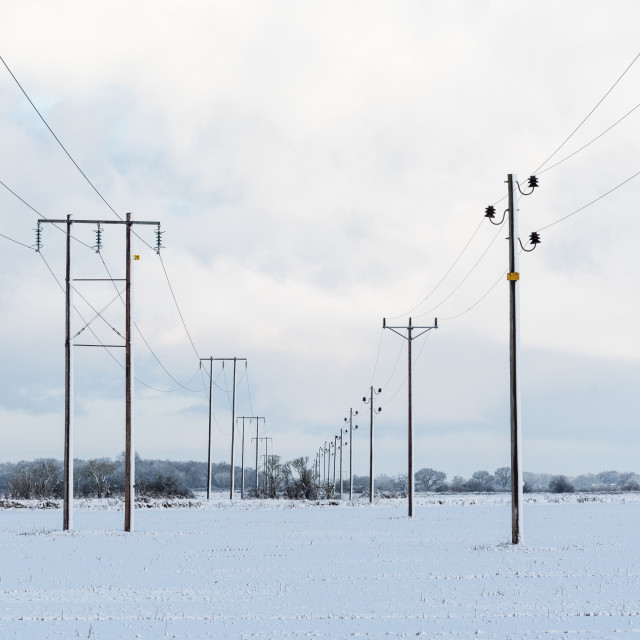 """Power lines in a snowy landscape"" stock image"