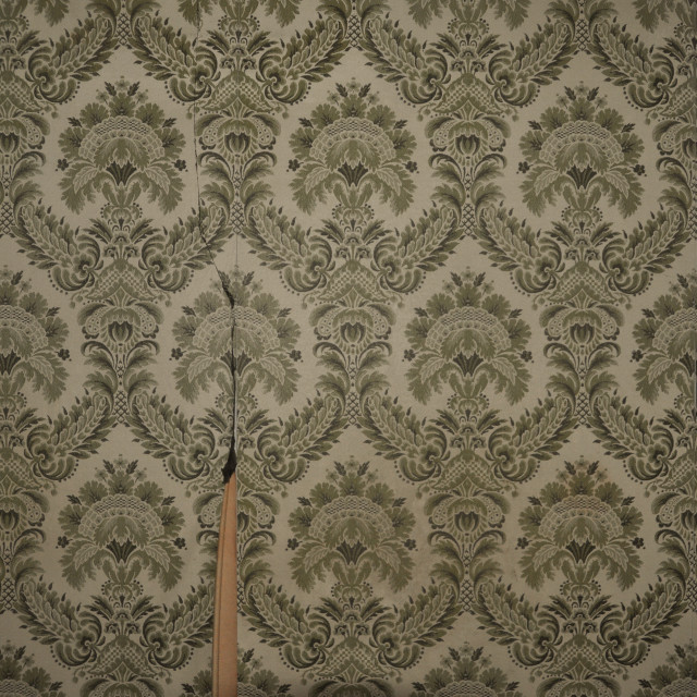 """""""wallpaper pattern and light switch"""" stock image"""