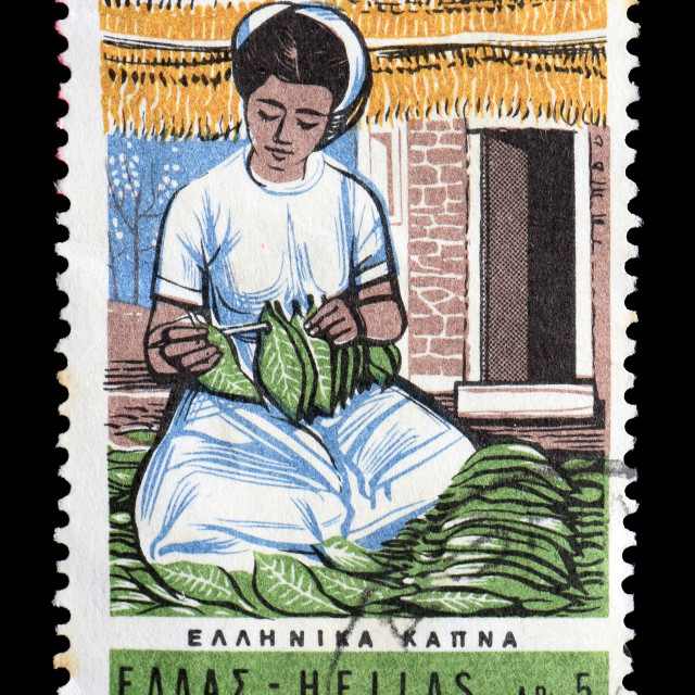 """woman with tobacco leaves postage stamp"" stock image"