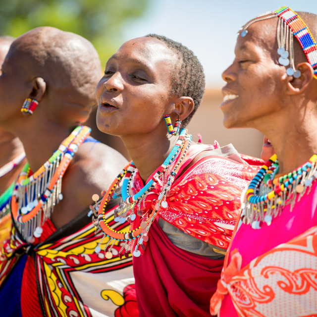 """Masai Women singing and dancing, Masai Mara, Kenya, Africa"" stock image"