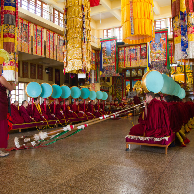 """""""Buddhist monks of the yellow hat tradition, Gyuto Tantric Monastery,..."""" stock image"""