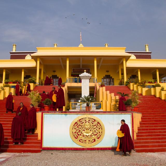 """""""Buddhist monks and the Karmapa temple, Gyuto Tantric Monastery, Dharamsala,..."""" stock image"""