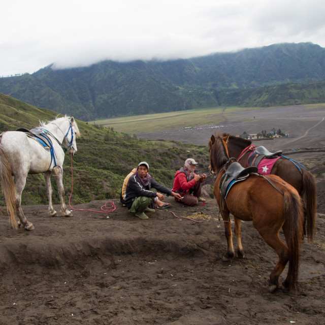 """""""Horsemen and horses on the banks of Mount Bromo volcano, Eastern Java, Indonesia"""" stock image"""